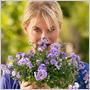 Zamilujte si zvončeky Campanula Addenda: hodia sa do moderných i tradičných záhradných a balkónových kompozícií!