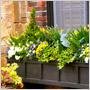 Vyskúšajte jarný fashion outfit pre vaše okenné kvetináče