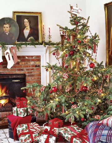 Americký vianočný stromček