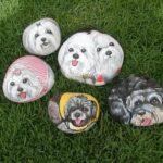 Maľované kamene ako darček alebo dekorácia