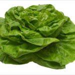 Hlávkový šalát je bohatý na vitamíny aj na minerály