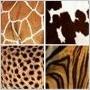 Zvieracie vzory opäť bodujú!