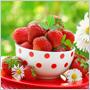 Jahody sú lahodné a s minimom kalórií