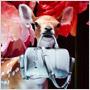 Louis Vuitton a Sofia Coppola vytvorili pre uvedenie novej kabelky Louis Vuitton SG Bag výklady plné fantázie