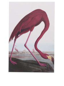 Biely zápisník s motívom plameniaka Magpie Birds