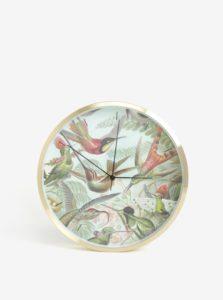 Zelené nástenné hodiny s motívom kolibríkov Magpie Hummingbirds