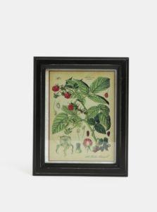 Ružovo-zelený obraz maliny Temerity Jones