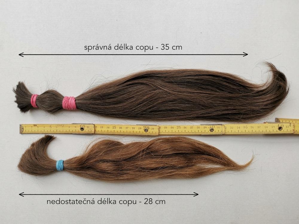 Správna dĺžka vlasov pre darovanie