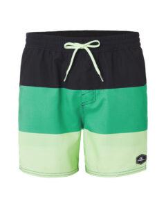 O'Neill Horizon Plavky Zelená