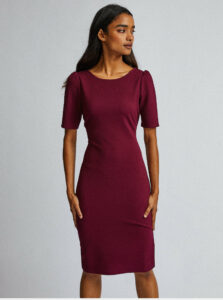 Vínové púzdrové šaty Dorothy Perkins Petite